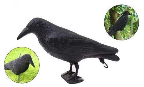 obrázek Maketa havrana na plašení ptáků