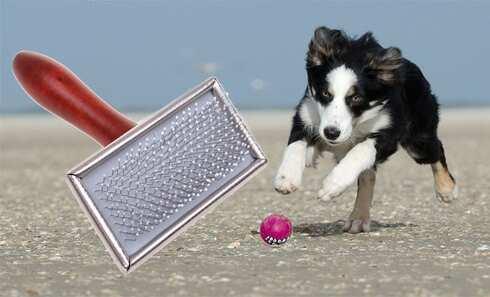 obrázek Vyčesávací hřeben pro psy a kočky