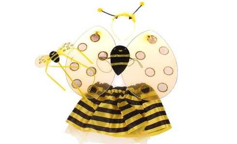 obrázok Kostým včielka