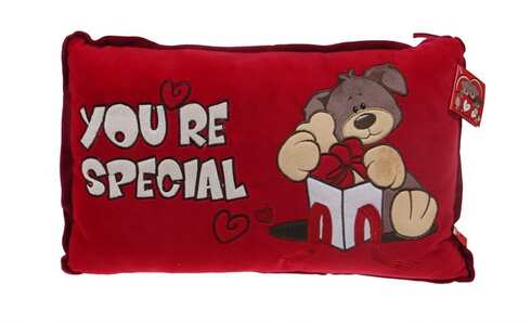 obrázek Červený polštářek You're special